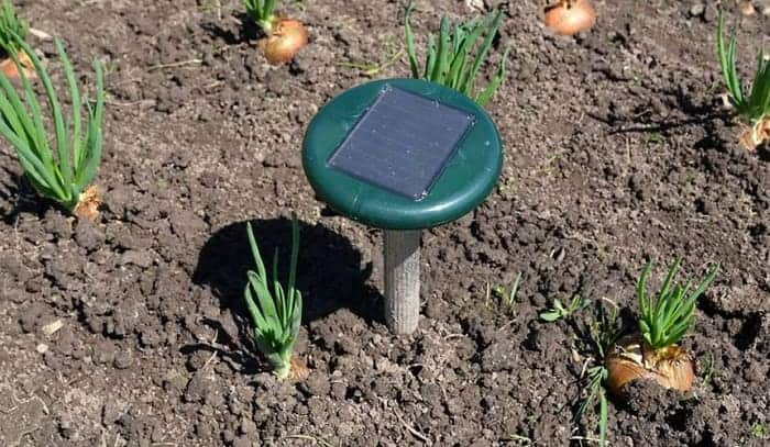 best-solar ultrasonic pest repeller