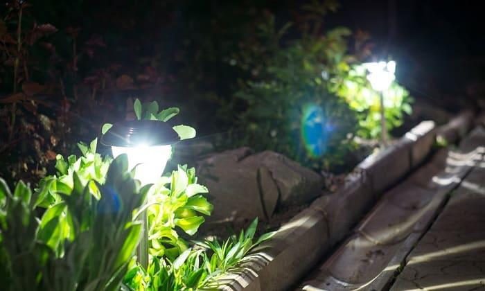 best-solar-pathway-lights