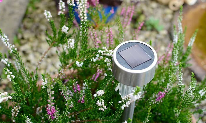 decorative-solar-lights