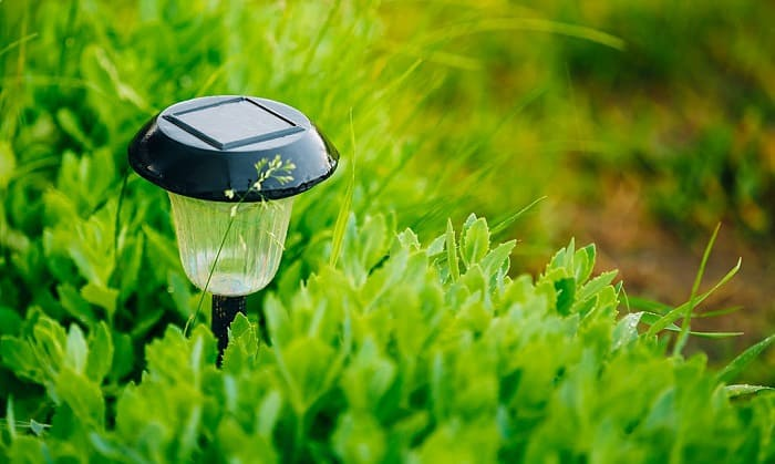 solar-lights-for-flower-beds