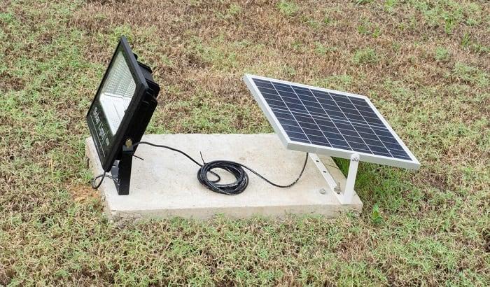 solar-spotlights-for-trees